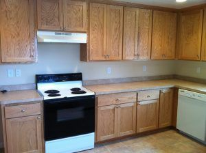 Chaska Mn Kitchen Remodel