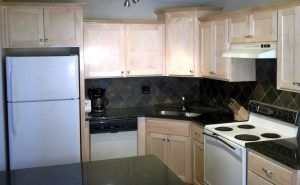 Eden Prairie Kitchen 04